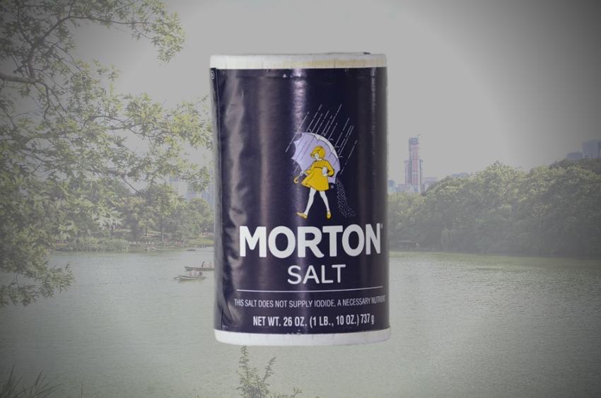 morton-salt-stash-container