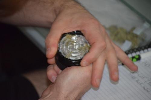 grinding-dry-herbs-in-herb-grinder