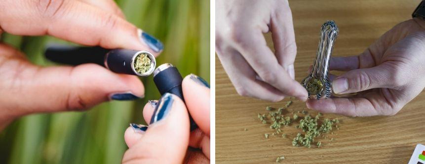 Dry Herb Vaporizers & Smoking Pipes